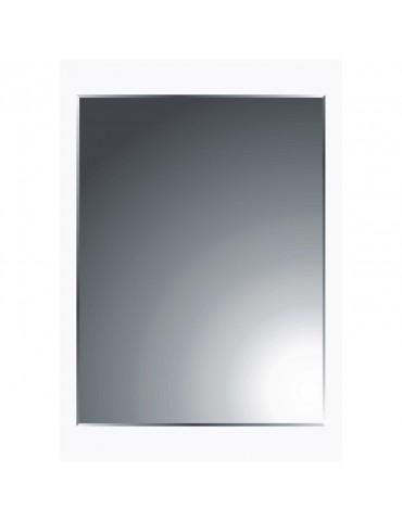 Miroir pour home gym et salle de sport