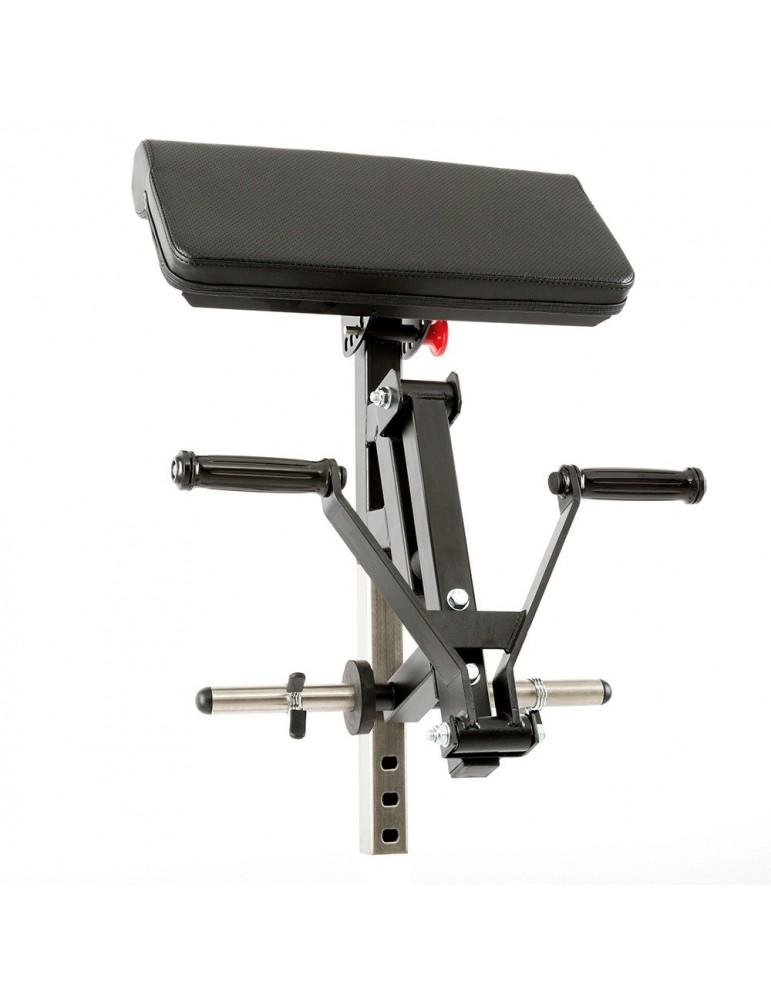Option pupitre à biceps à charge libre 100 kg max